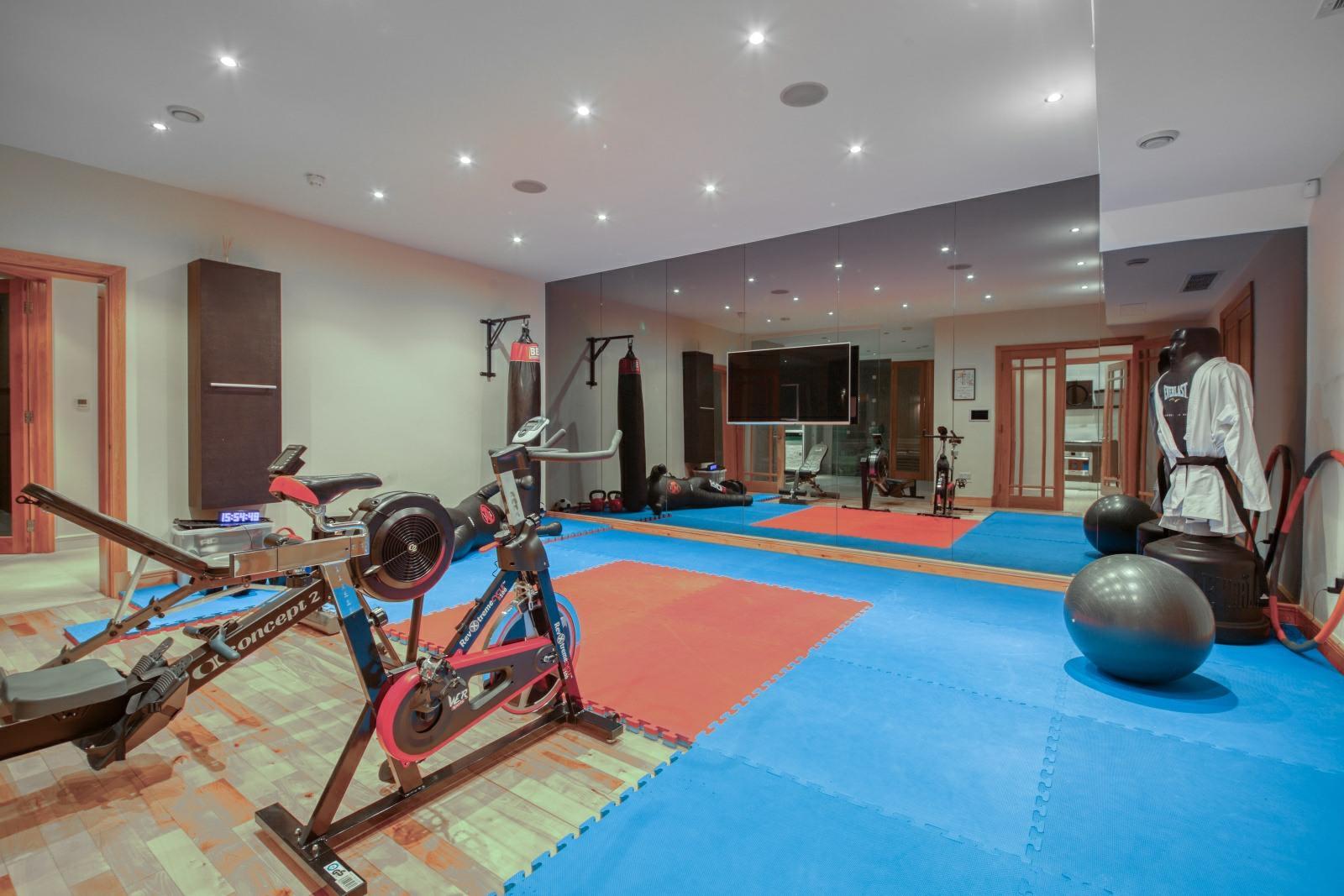 Kingston upon Thames, Surrey, 6 Bedrooms, Home Gym