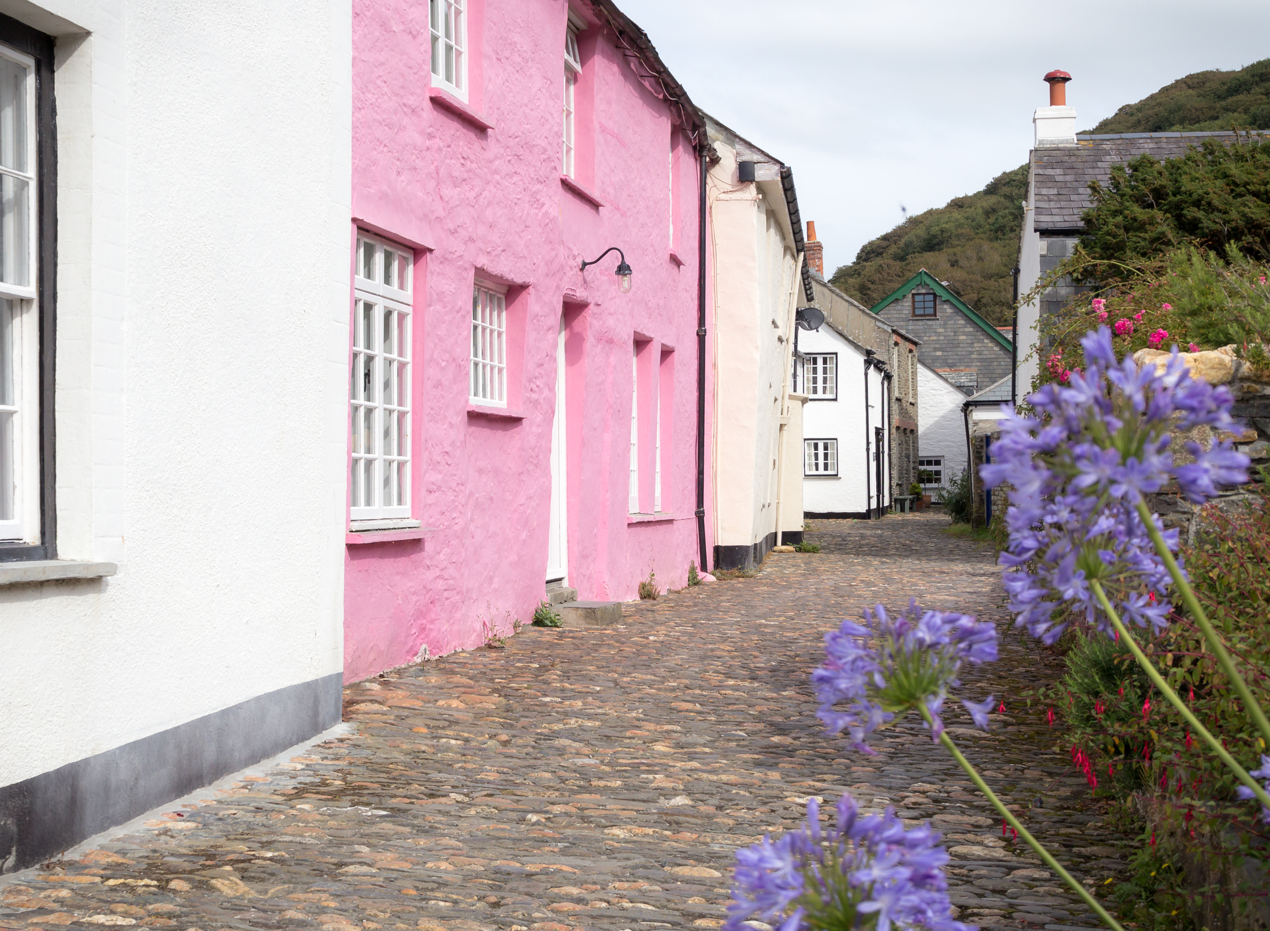 pretty pink house in coastal village with flowers