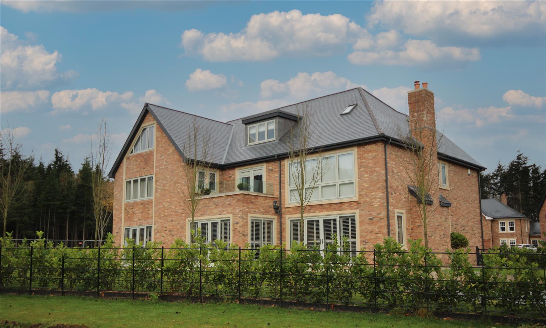 grand executive new build family home