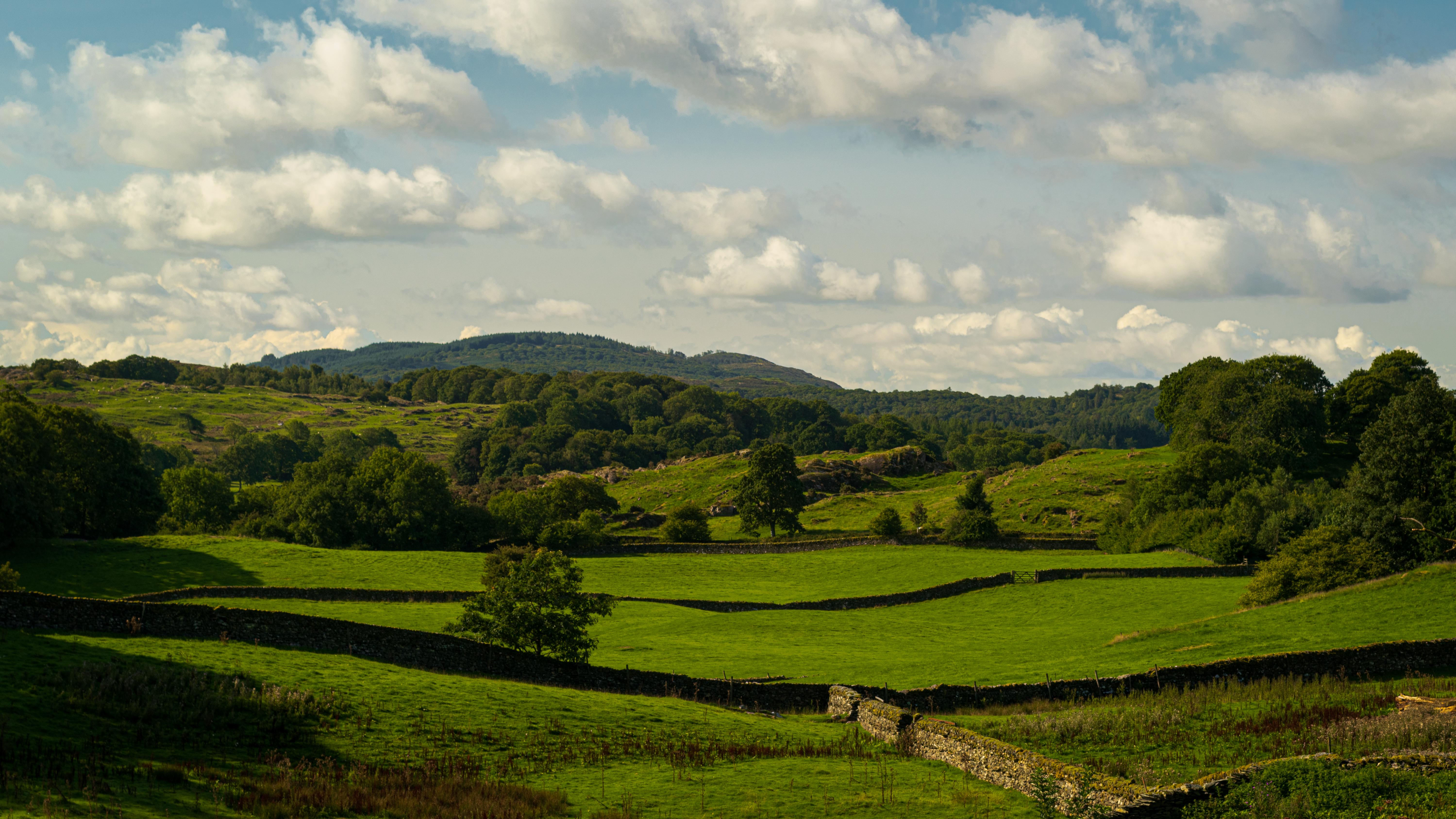 beautiful English countryside rural fields
