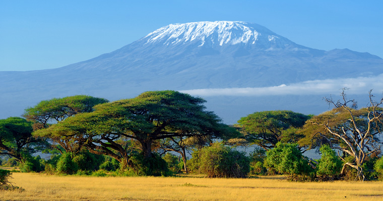 2019 International Adventure: Climb Mount Kilimanjaro