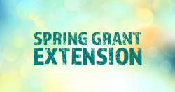 We've Extended the Spring Grant Programme!