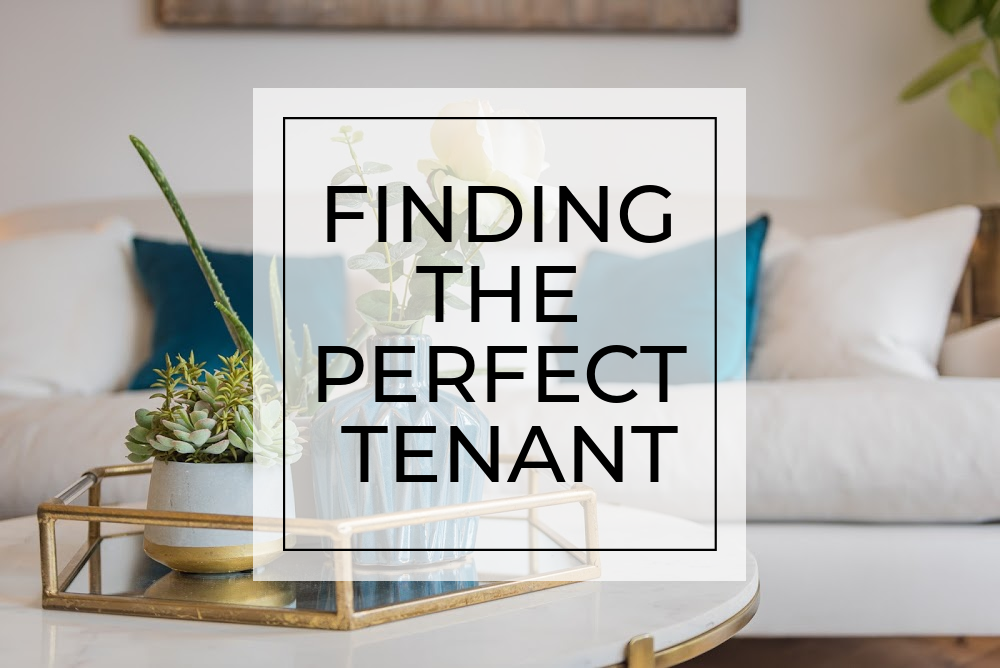 Finding the perfect tenant
