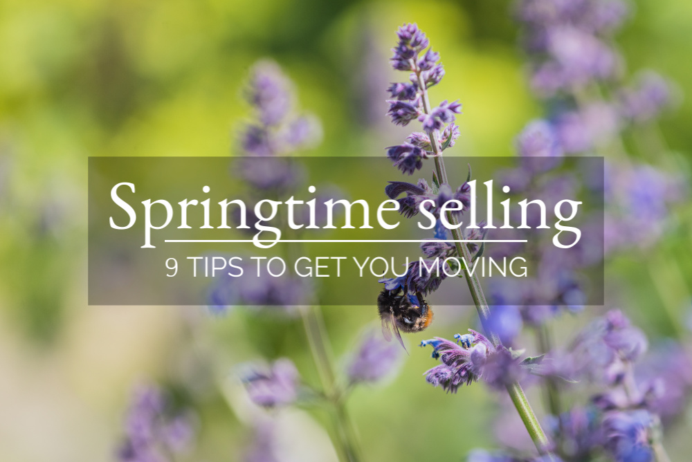 main-blog-image-springtime-selling-1