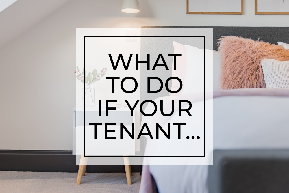 What to do if your tenant ...