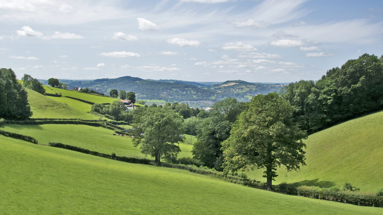 More rural businesses in Wales and the West Midlands to benefit from AMC support