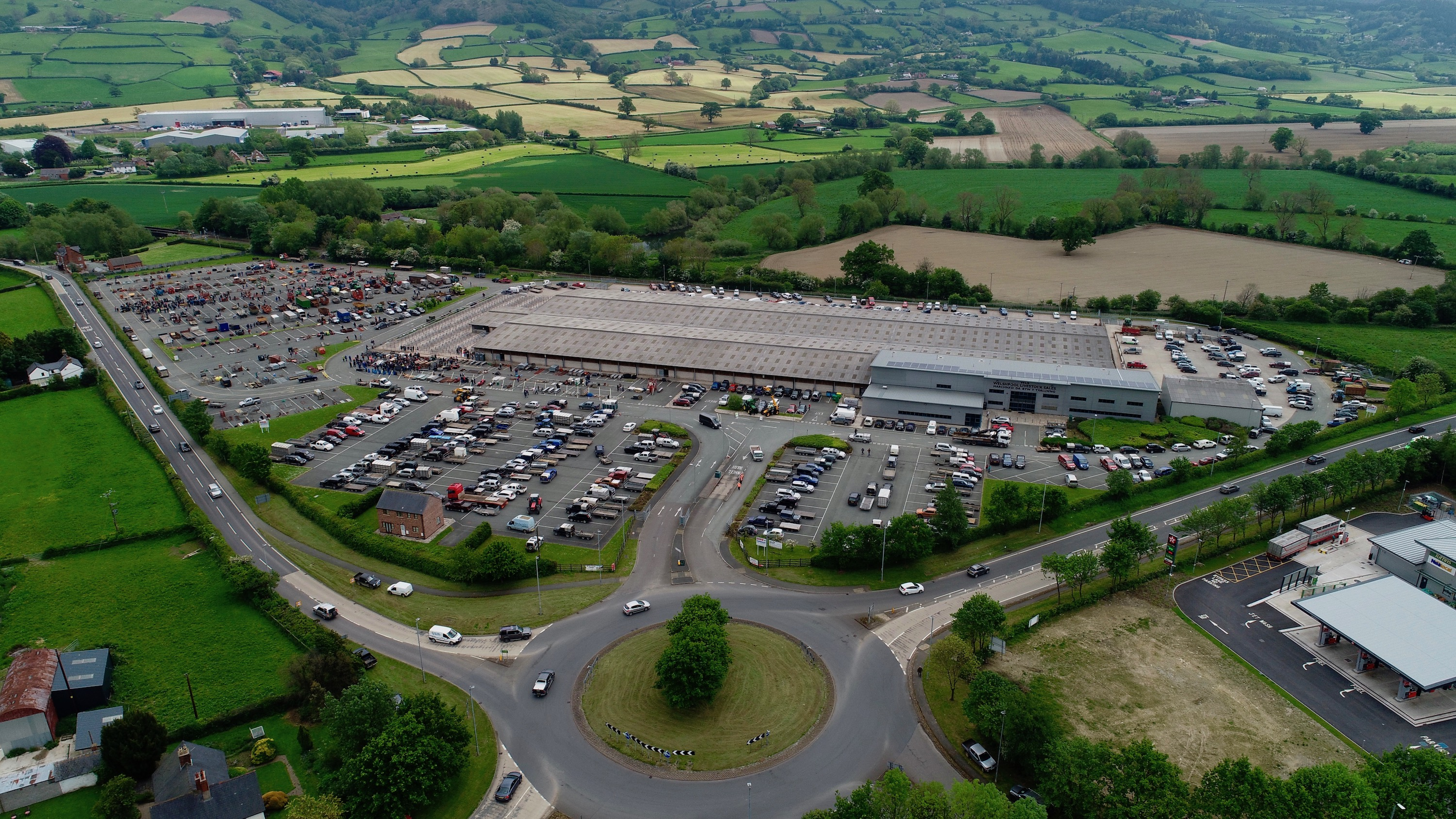welshpool_livestock_sales