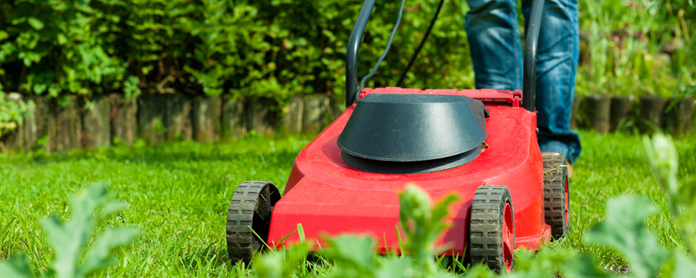 mowing_law_2