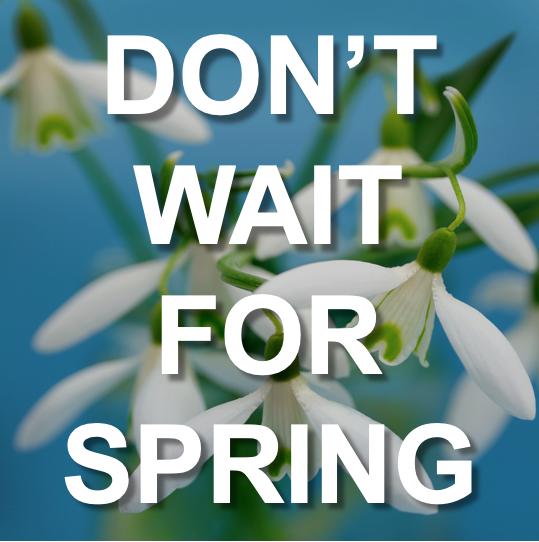 Don't Wait 'till Spring