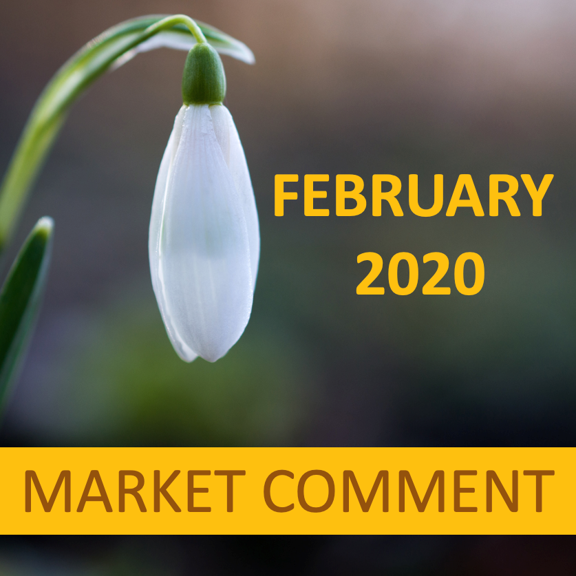 FEBRUARY 2020 MARKET COMMENT