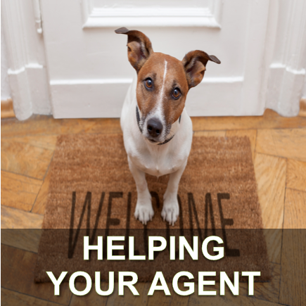 Helping your agent