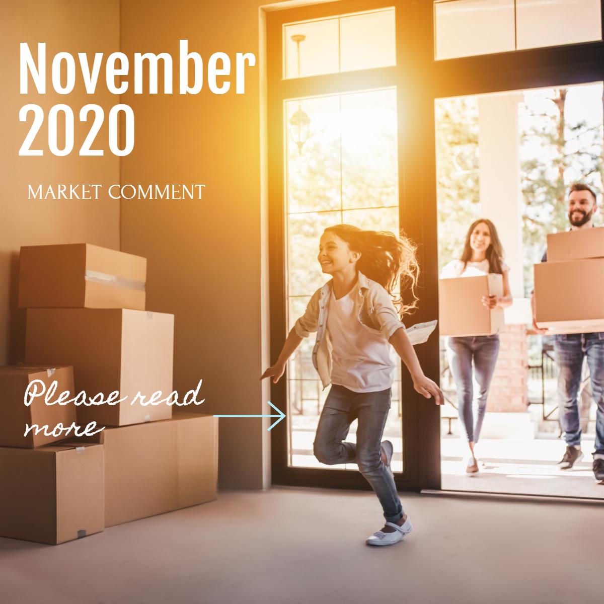NOVEMBER 2020 MARKET COMMENT