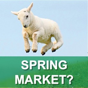 Spring Market Comment - May 2019