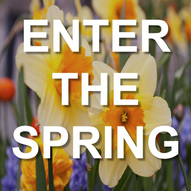 enter_the_spring