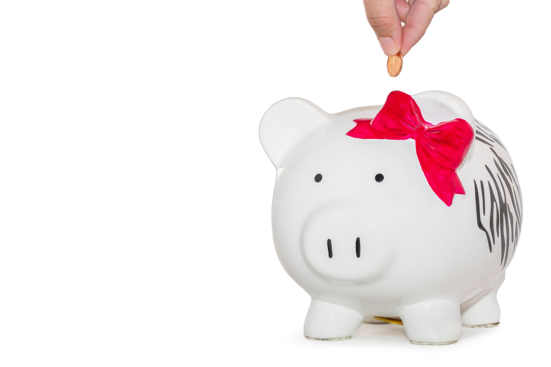 110320_budget_piggy_bank