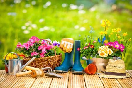gardening_tips_large
