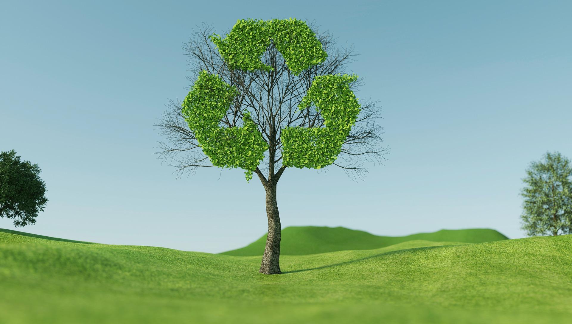 recycle_awareness_tree_image