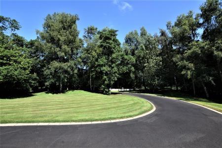 Front Lawn.jpg