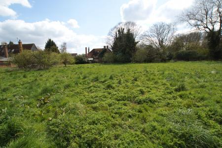 main meadow