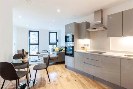 Alt Kitchen/Living