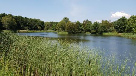 Lake Avenue, Waters Edge