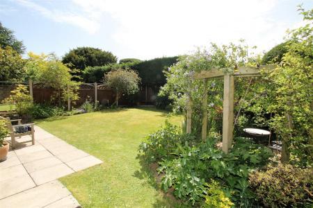 Garden2 edited.jpg