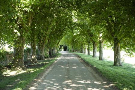 Chittlegrove Farm, Rendcomb-150
