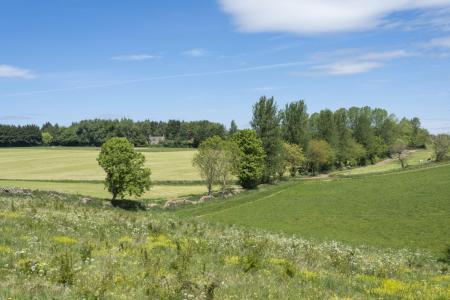 Chittlegrove Farm, Rendcomb-074