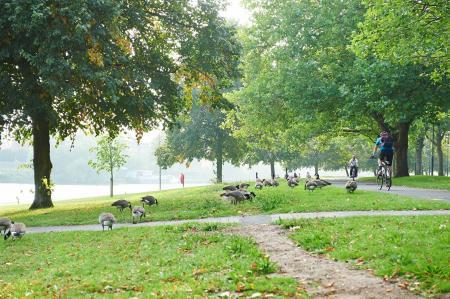 11-The-Meadows_706-sfw.jpg