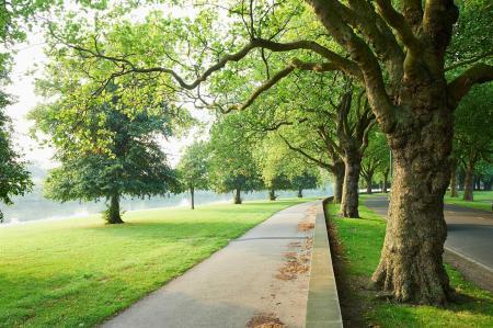 Embankment Walk
