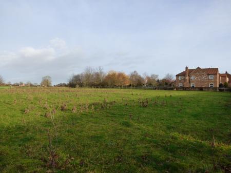 Building Plot, Land West Of Exelby Grange