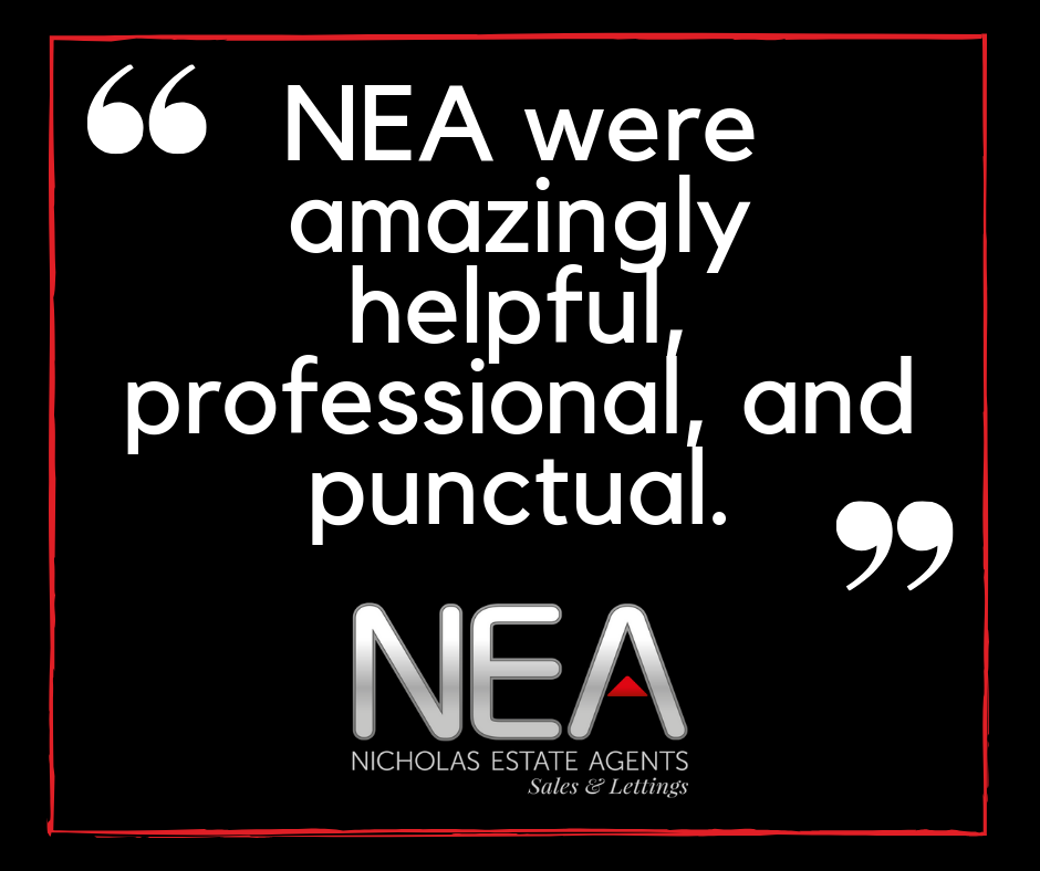 nea_were_amazingly_helpful_professional_and_punctual