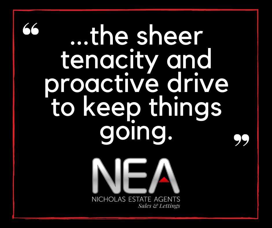 the_sheer_tenacity_and_proactive_drive_to_keep_things_going