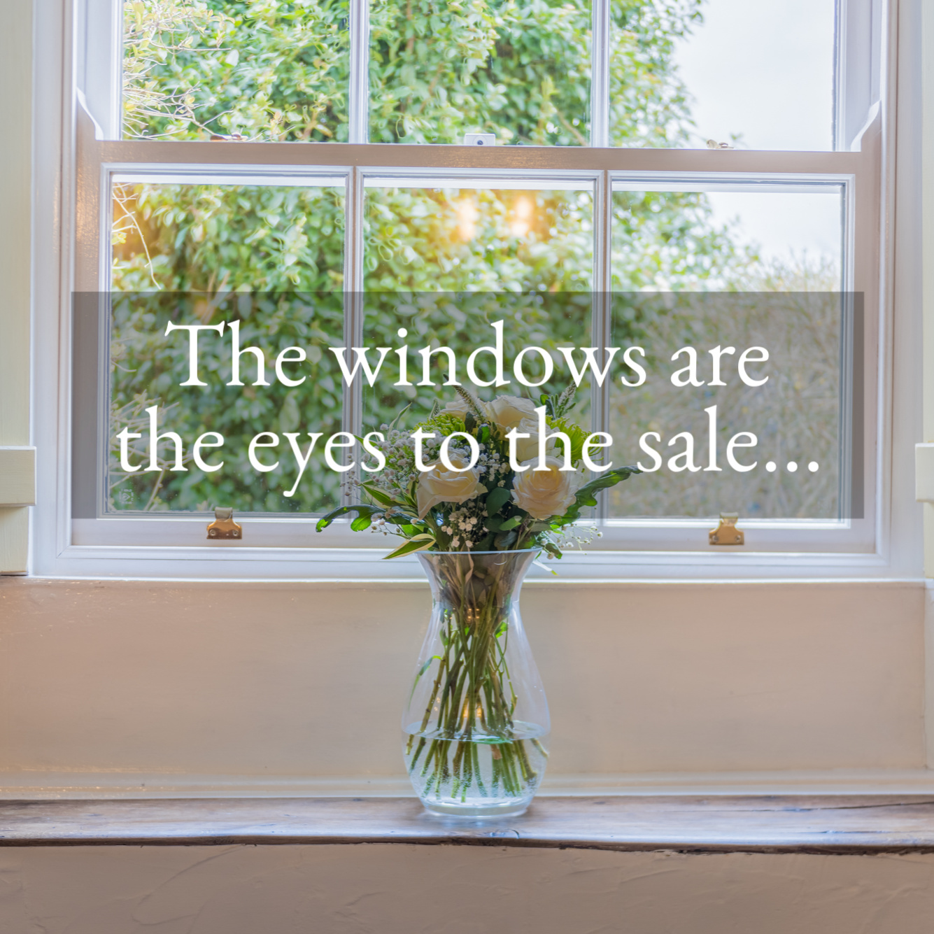 tg3-the-windows-are-the-eyes-to-the-sale