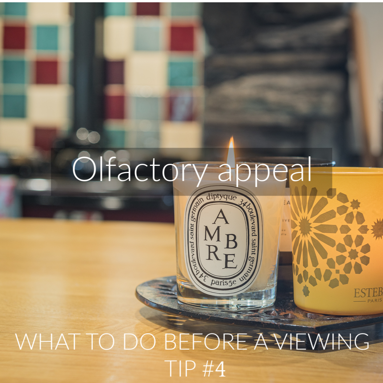 tg4-olfactory-appeal