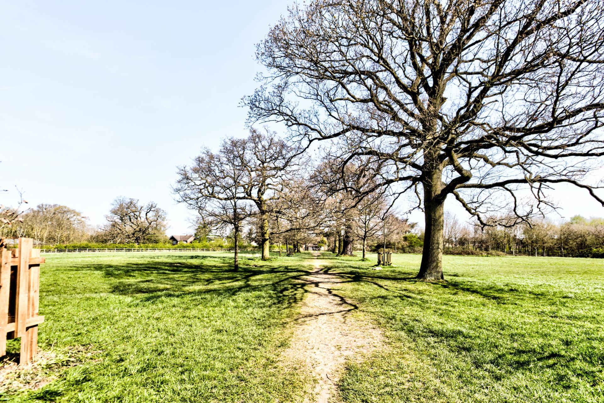 pishiobury_park-2_hd