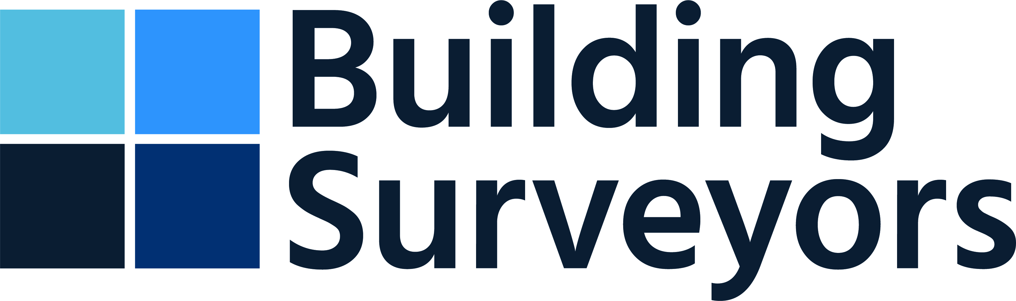 building_surveyors_logo