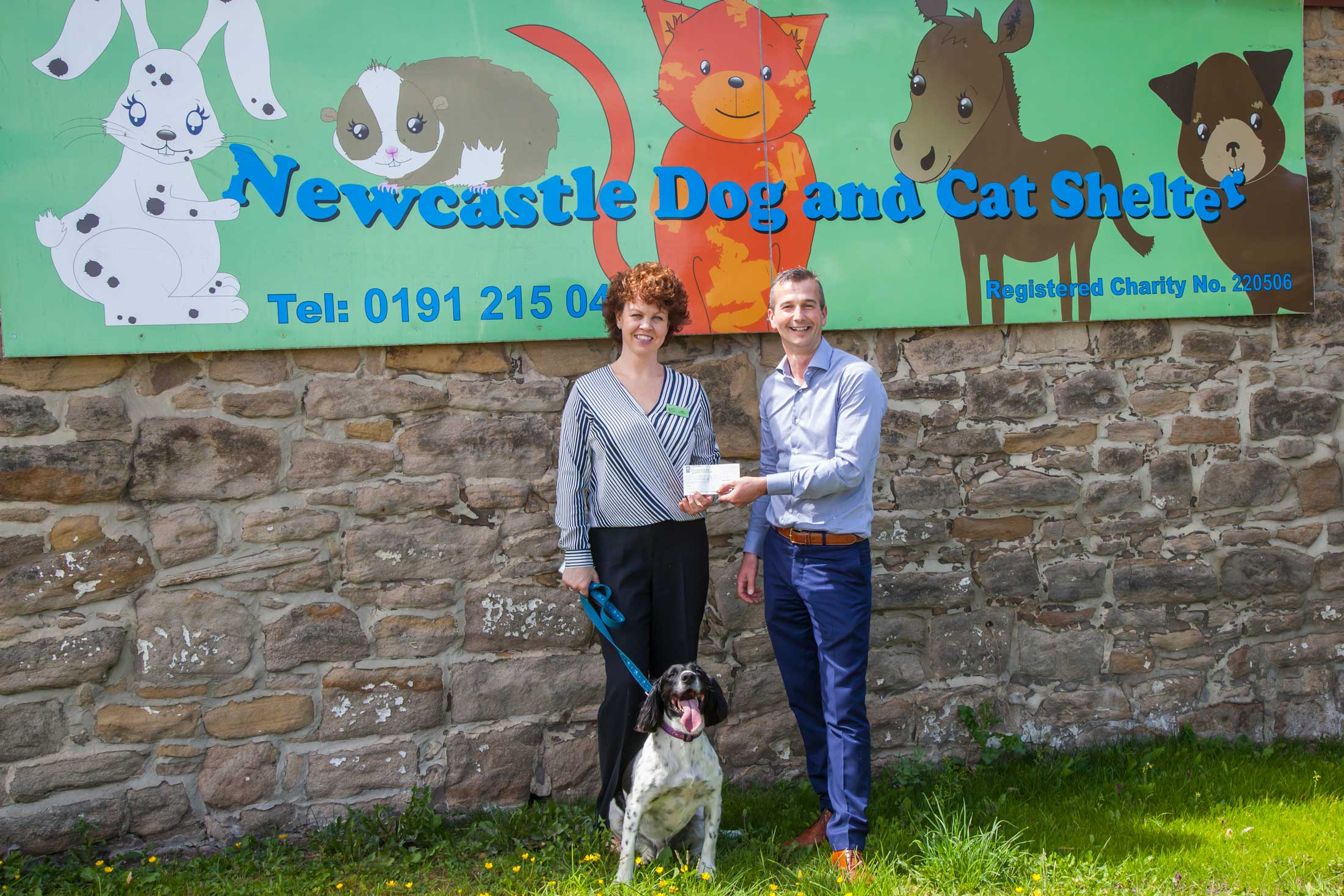 mansons-newcastle-dog-and-cat-shelter