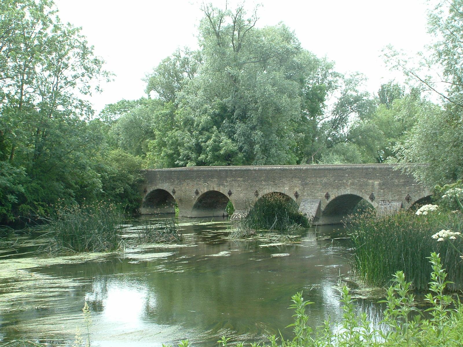 oakley_bridge